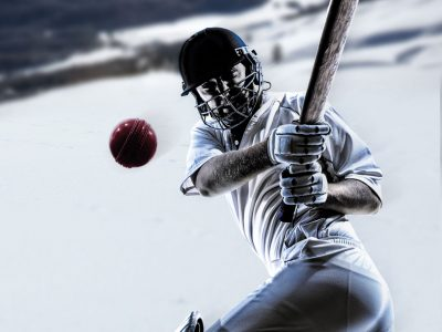 Ice Cricket Batsman Smash